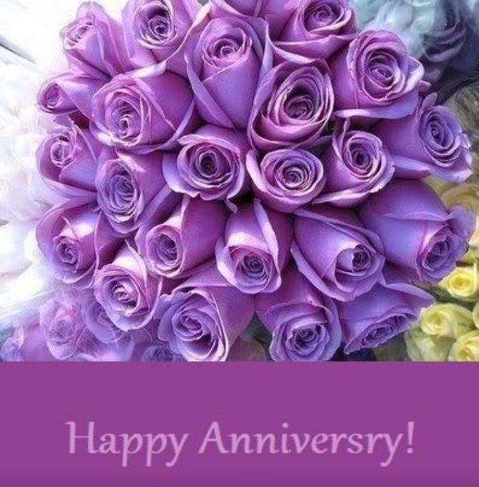 Anniversary(1yr)