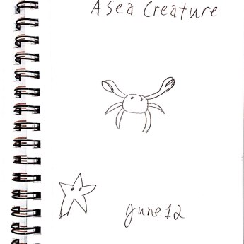 June 12 A Sea Creature