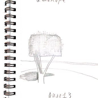 June 13 Landscape