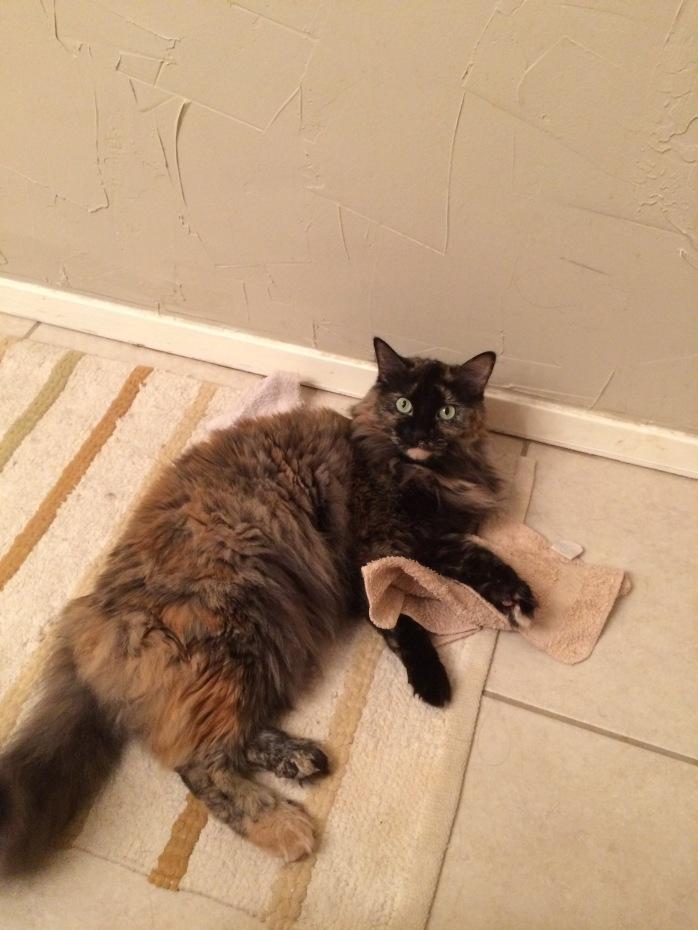 Lucy with Washcloths