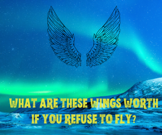 What are these wings worth if you refuse to fly_